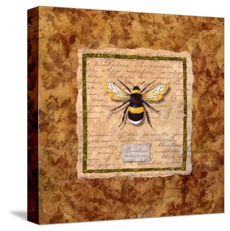 Bumble Bee-Abby White-Stretched Canvas Print