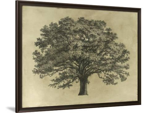 Elephant Tree--Framed Art Print