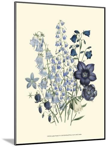 Loudon Florals IV-Jane W^ Loudon-Mounted Art Print