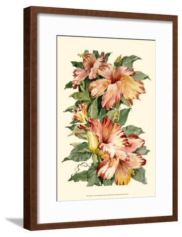 Hibiscus II-Joy Waldman-Framed Art Print