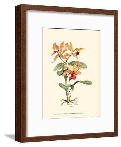 Orange Orchid-Joy Waldman-Framed Art Print
