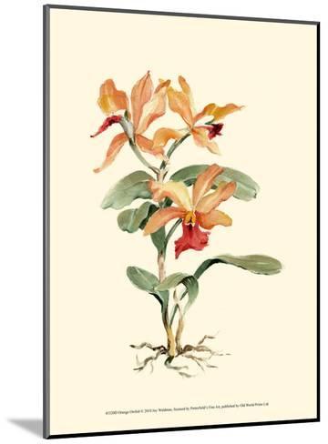 Orange Orchid-Joy Waldman-Mounted Art Print