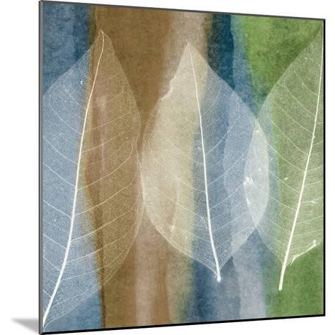 Leaf Structure II-John Rehner-Mounted Art Print