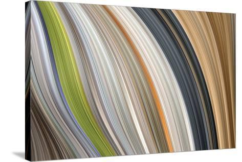 Windswept III-James Burghardt-Stretched Canvas Print