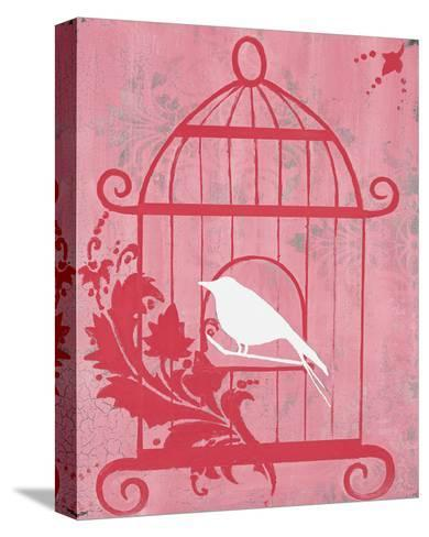 Pink Cage I-Hakimipour-ritter-Stretched Canvas Print