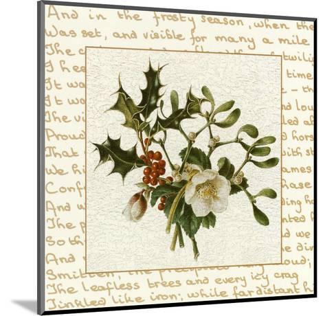 Season Flower--Mounted Art Print