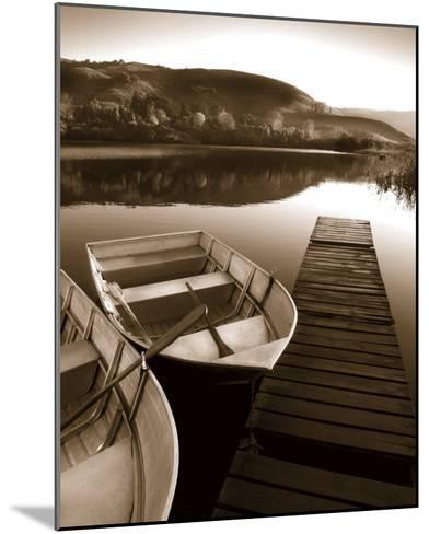 Row Boat Awaits-Danita Delimont-Mounted Art Print