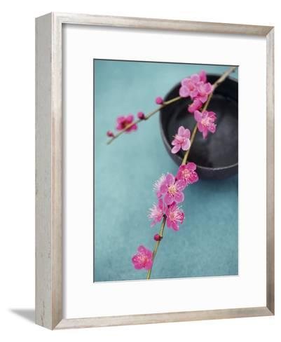 Cherry Tree Branch-Amelie Vuillon-Framed Art Print