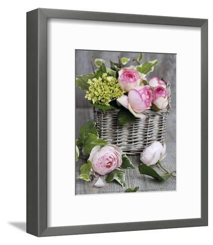 Roses-Catherine Beyler-Framed Art Print