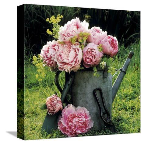 Watering Can And Peonies-James Guilliam-Stretched Canvas Print