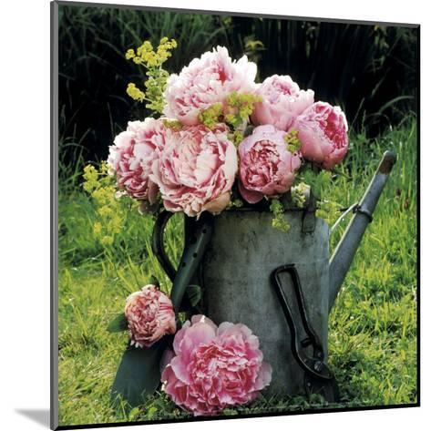 Watering Can And Peonies-James Guilliam-Mounted Art Print