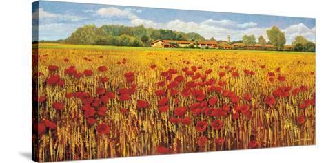 Campo di Papaveri-Andrea Del Missier-Stretched Canvas Print