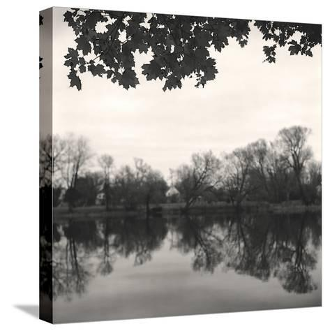 Rideau River, Study, no. 2-Andrew Ren-Stretched Canvas Print
