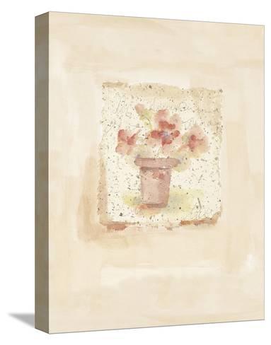 Blush Blossoms-Jane Claire-Stretched Canvas Print