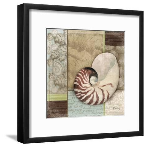 Santa Rosa Shell II-Paul Brent-Framed Art Print