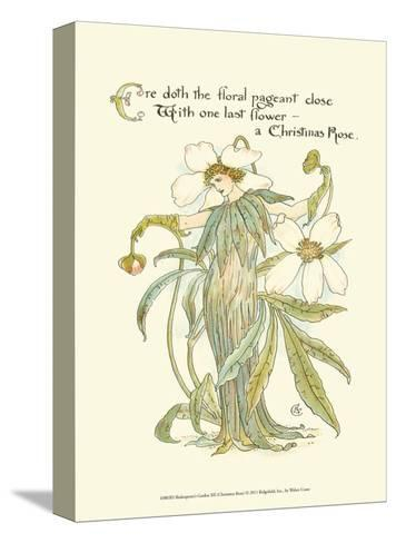 Shakespeare's Garden XII (Christmas Rose)-Walter Crane-Stretched Canvas Print