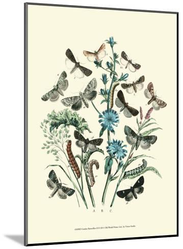 Garden Butterflies II--Mounted Art Print