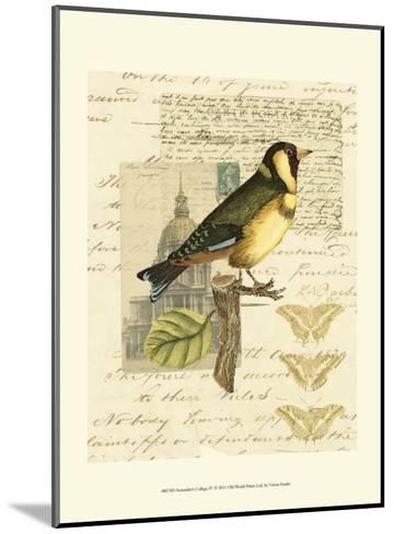 Naturalist's Collage IV--Mounted Art Print