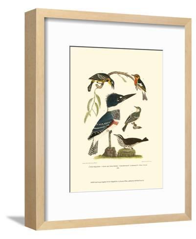 Small Antique Kingfisher I-Alexander Wilson-Framed Art Print