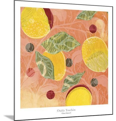 Citrus Limon I-Ouida Touch?n-Mounted Art Print