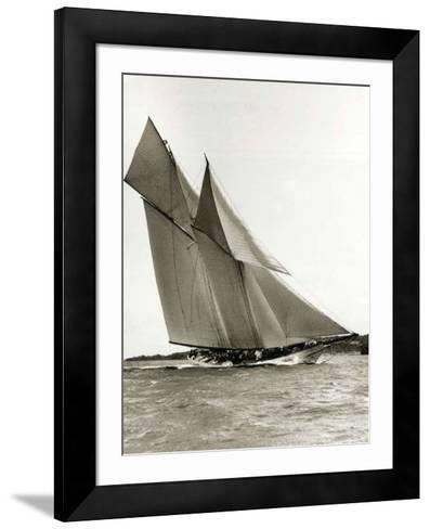 Cetonia-Frank Beken-Framed Art Print