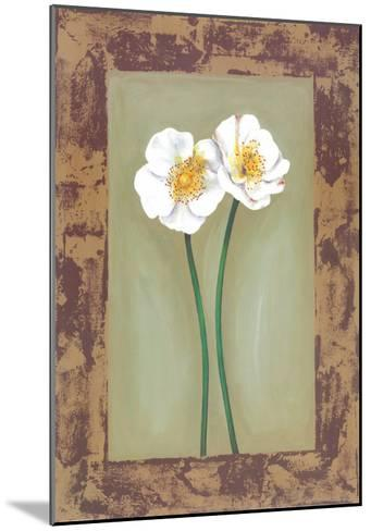 Flowers In Brown Frame II-Ferrer-Mounted Art Print
