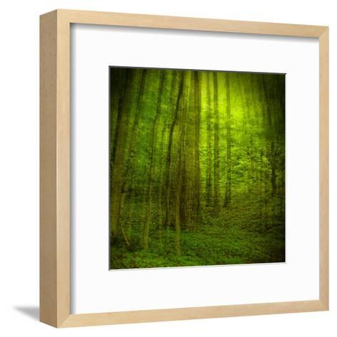 Natural Look III-Jean-Fran?ois Dupuis-Framed Art Print