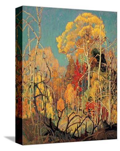 Autumn in Orillia-Franklin Carmichael-Stretched Canvas Print