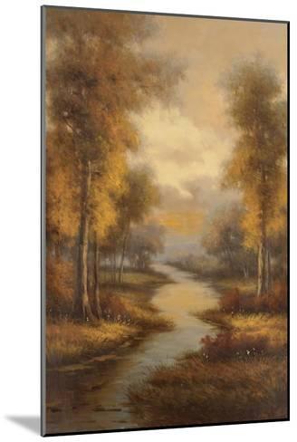 Fall Creek-Pierre-Mounted Art Print
