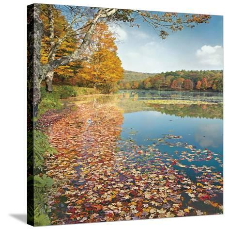 Bass Lake In Autumn II-Marty Hulsebos-Stretched Canvas Print