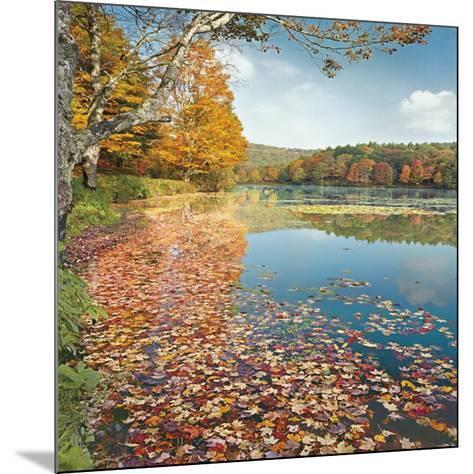 Bass Lake In Autumn II-Marty Hulsebos-Mounted Art Print