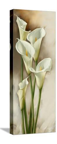 Callas Gracieux I-Igor Levashov-Stretched Canvas Print