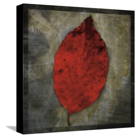 Red Dogwood-John Golden-Stretched Canvas Print