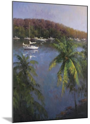 Caribbean Lagoon-Karen Dupr?-Mounted Art Print