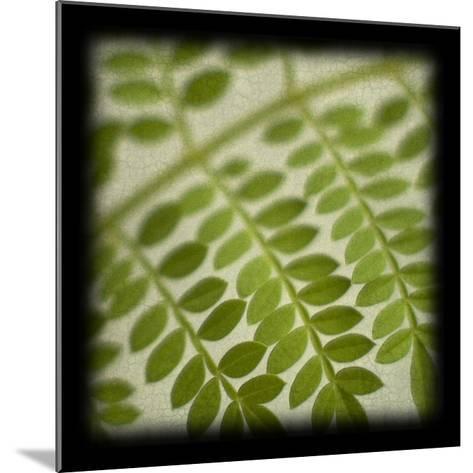 Leafy Fern-June Hunter-Mounted Art Print