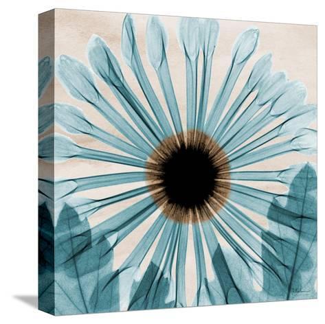 Dream in Blue-Albert Koetsier-Stretched Canvas Print