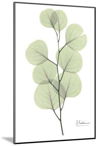 Eucalyptus in Pale Green-Albert Koetsier-Mounted Art Print