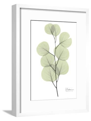 Eucalyptus in Pale Green-Albert Koetsier-Framed Art Print