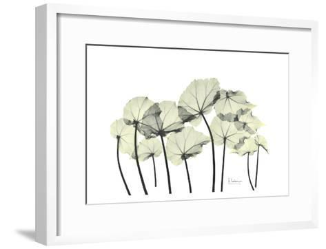 Begonia Leaves in Green-Albert Koetsier-Framed Art Print