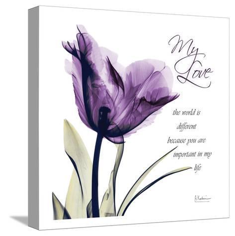 My Love, Purple Tulip-Albert Koetsier-Stretched Canvas Print