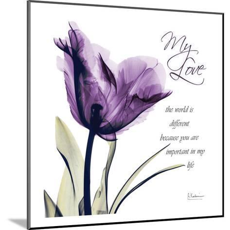 My Love, Purple Tulip-Albert Koetsier-Mounted Art Print