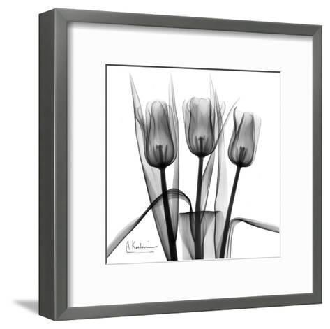 Tulip Trio in Black and White-Albert Koetsier-Framed Art Print