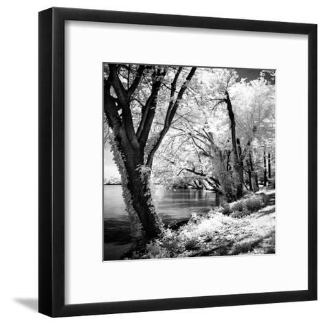 Spring on the River Square II-Alan Hausenflock-Framed Art Print