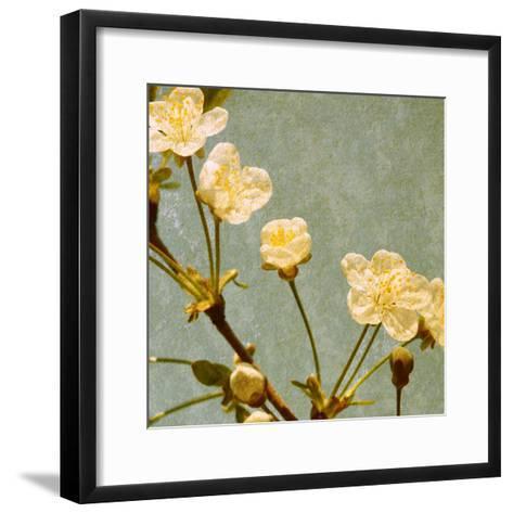 Blossoming Branch--Framed Art Print