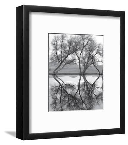 Clarity in the Waters--Framed Art Print