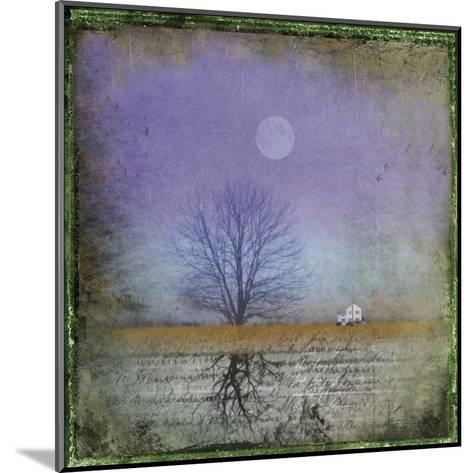 Moonlight in Vermont-Dawne Polis-Mounted Art Print