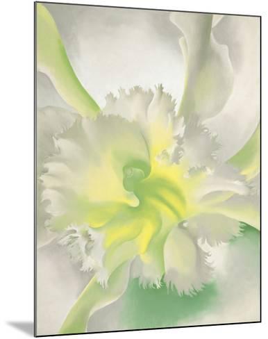 An Orchid, 1941-Georgia O'Keeffe-Mounted Art Print