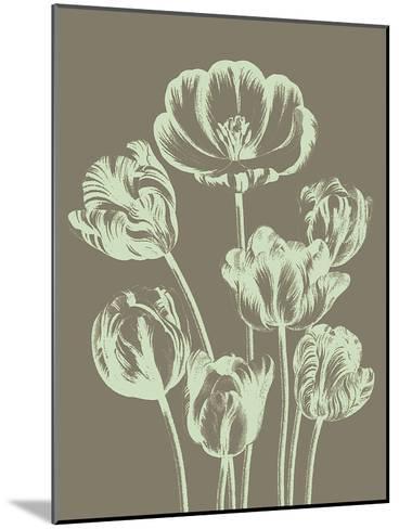 Tulip, no. 12--Mounted Art Print