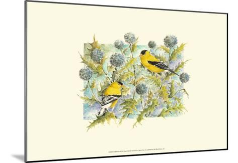Goldfinches-Janet Mandel-Mounted Art Print