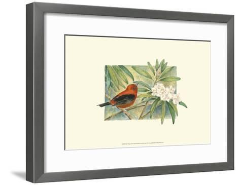 Scarlet Tanager-Janet Mandel-Framed Art Print